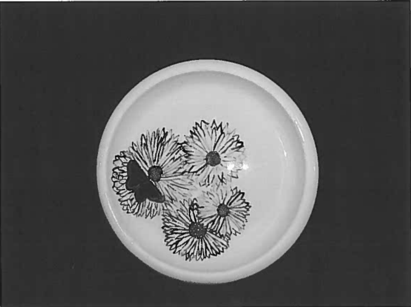 Daisy-Fly - Thrown Ceramic Plate